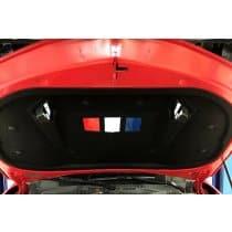 6th Gen Camaro Hood Liner Plates Custom Painted