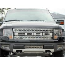 2010-2014 Ford Raptor Lower Front Grille Brushed 2Pc