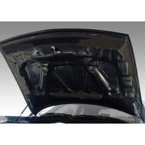 Dodge Challenger Carbon Fiber Hood